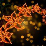 flowers-1364656_640